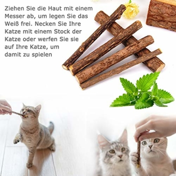 AILUKI 31 Stück Katzenspielzeug Set mit Katzentunnel Jingle Bell Katzen Spielzeug Variety Pack für Kitty - 7
