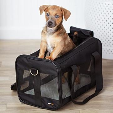 AmazonBasics Transporttasche für Haustiere, weiche Seitenteile, Schwarz, Größe M - 13