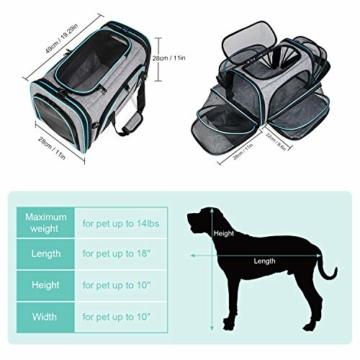 BERTASCHE Tragetasche für Katze Hund Transporttasche Reisetasche für Auto Flug - 2