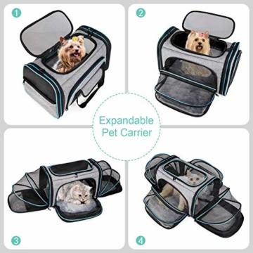 BERTASCHE Tragetasche für Katze Hund Transporttasche Reisetasche für Auto Flug - 5