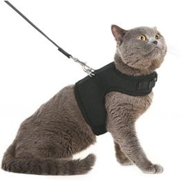 Bingpet Katzengeschirr und -leine, ausbruchsicher, einstellbarer, weicher Netz-Holster –ideal für das Ausführen kleiner Kätzchen - 1
