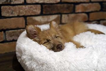 E-dogbed Exklusives weiches und kuscheliges Hundebett Fuzzy Ø 70 cm, Weiß Haustierbett Katzensofa Katzenbett Doughnut-Form Hundeliege Katzenliege Katzenkissen Hundekorb Hundeliege Hundekissen - 7