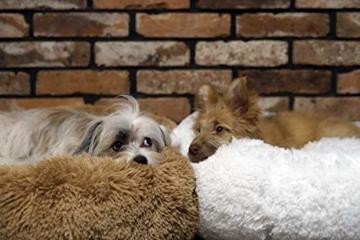 E-dogbed Exklusives weiches und kuscheliges Hundebett Fuzzy Ø 70 cm, Weiß Haustierbett Katzensofa Katzenbett Doughnut-Form Hundeliege Katzenliege Katzenkissen Hundekorb Hundeliege Hundekissen - 9