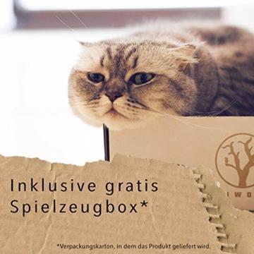 ecoworks Premium Katzenspielzeug |natürliche robuste Spielangel mit Maus | Stofftier 3er Set zur Katzenbeschäftigung | Kratzspielzeug | Geschenkbox | interaktives Zubehör | natürlichen Fasern & Federn - 4