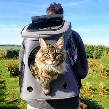 Fat Cat Cat Backpack - Katzenrucksack for Katzen - 8
