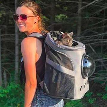 Fat Cat Cat Backpack - Katzenrucksack for Katzen - 9