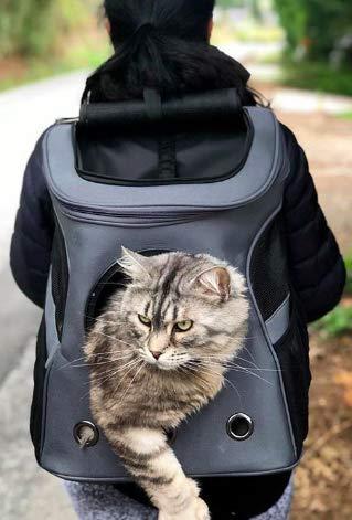 Fat Cat Katze Rucksack Carrier Rucksack–Cat für Katzen von - 5