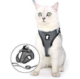 Fitlife Katzengeschirr mit Leine Ausbruchsicher Weicher Netz-Holster Brustgeschirr Geschirr für Katzen Hunde Welpengeschirr -M - 1