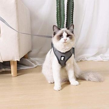 Fitlife Katzengeschirr mit Leine Ausbruchsicher Weicher Netz-Holster Brustgeschirr Geschirr für Katzen Hunde Welpengeschirr -M - 7