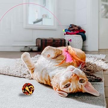 GOLDGE 16 Stück Katzenspielzeug Katze Toys Variety Spielzeug Set Federspielzeug Bälle Verschiedene Spielzeug für Katze Kitty - 2