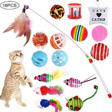 GOLDGE 16 Stück Katzenspielzeug Katze Toys Variety Spielzeug Set Federspielzeug Bälle Verschiedene Spielzeug für Katze Kitty - 1