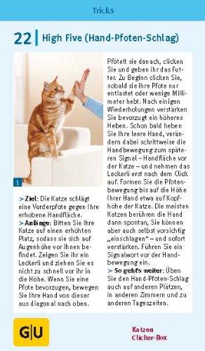 Katzen Clicker-Box gelb 12 x 3,5 cm: Plus Clicker für sofortigen Spielspaß (GU Tier-Box) - 14