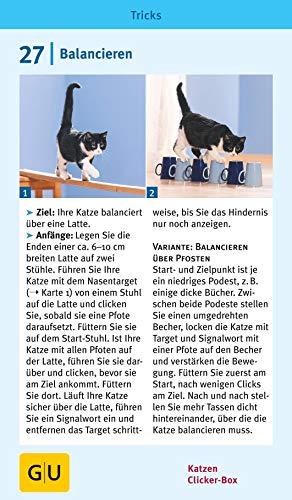 Katzen Clicker-Box gelb 12 x 3,5 cm: Plus Clicker für sofortigen Spielspaß (GU Tier-Box) - 18