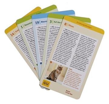 Katzen Clicker-Box gelb 12 x 3,5 cm: Plus Clicker für sofortigen Spielspaß (GU Tier-Box) - 20