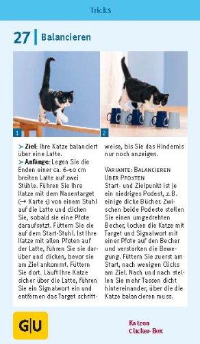 Katzen Clicker-Box gelb 12 x 3,5 cm: Plus Clicker für sofortigen Spielspaß (GU Tier-Box) - 7