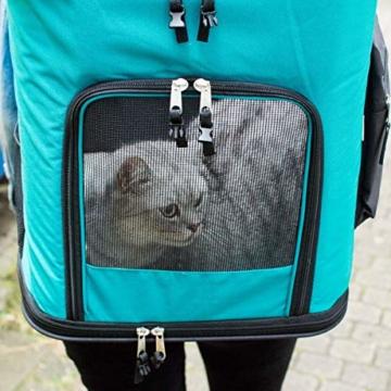 Navaris Rucksack für Hund Katze gepolstert - Hunderucksack Katzenrucksack mit Bauchgurt - 40x33x40cm Haustier Backpack faltbar - Traglast bis 12kg - 9