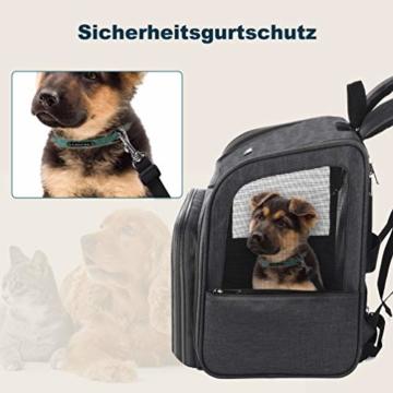 Petacc Hunde Katzen Rucksack Skalierbar Geräumig Hundetasche Belüftung Haustier Transportbox Bequem, Transporttasche für Reisen für kleine Hunde, Katzen und Kleintiere bis 6,8 kg - 6