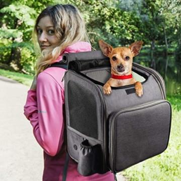 Petacc Hunde Katzen Rucksack Skalierbar Geräumig Hundetasche Belüftung Haustier Transportbox Bequem, Transporttasche für Reisen für kleine Hunde, Katzen und Kleintiere bis 6,8 kg - 7