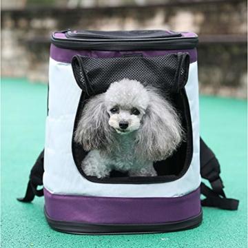 Petcomer SBC5148 Haustiertragetasche für Hunde und Katzen Faltbarer Rucksäcke gut für Wander-Kampagne Tägliche Verwendung, Einheitsgröße, Purple - 7