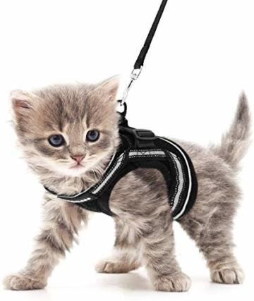 rabbitgoo Katzengeschirr Leine Set für Spaziergänge ausbruchsicher verstellbar weich Kätzchenweste mit reflektierendem Streifen für extra kleine Katzen, bequemes Outdoorgeschirr, schwarz M - 3