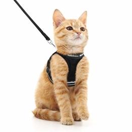 rabbitgoo Katzengeschirr Leine Set für Spaziergänge ausbruchsicher verstellbar weich Kätzchenweste mit reflektierendem Streifen für extra kleine Katzen, bequemes Outdoorgeschirr, schwarz M - 1