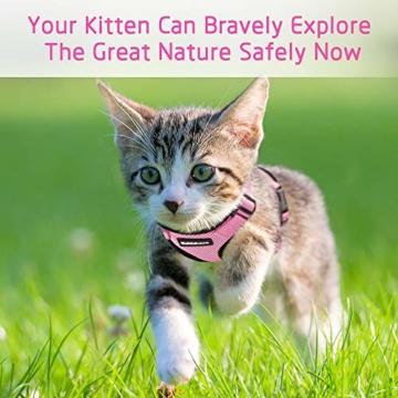 rabbitgoo Katzengeschirr mit Leine Softgeschirr für Katze Brustgeschirr Cat Harness Katzengarnitur ausbruchsicher verstellbar Katzenweste Rosa XS - 2