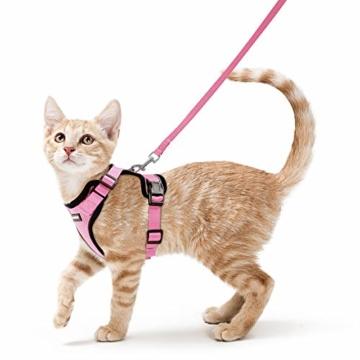 rabbitgoo Katzengeschirr mit Leine Softgeschirr für Katze Brustgeschirr Cat Harness Katzengarnitur ausbruchsicher verstellbar Katzenweste Rosa XS - 1