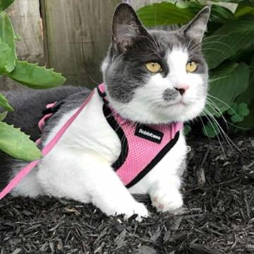 rabbitgoo Katzengeschirr mit Leine Softgeschirr für Katze Brustgeschirr Cat Harness Katzengarnitur ausbruchsicher verstellbar Katzenweste Rosa XS - 9