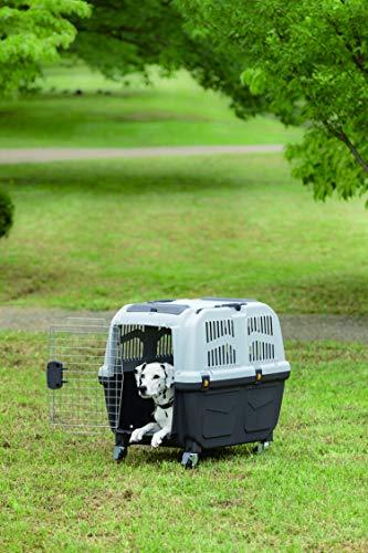 Skudo S01050300 Skudo 3 Iata, Transportbox, Hellgrau-Dunkelgrau, 60 x 40 x 39 cm - 2