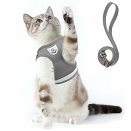 Supet Katzengeschirr Geschirr für Katzen Welpengeschirr Weich Kaninchengarnitur Katzen Weste mit Leine für Kitten Hunde Chihuahua - 1