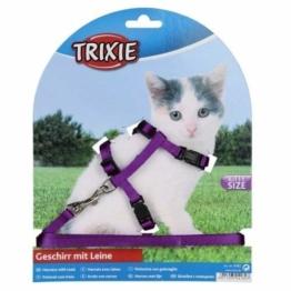 Trixie 4182 Kätzchengeschirr mit Leine, Nylon, 19–31 cm/8 mm, 1,20 m - 1