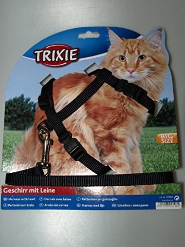 Trixie 41960 Katzengeschirr mit Leine, XL, Nylon, 34–57 cm/13 mm, 1,20 m - 1