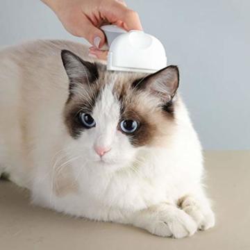 XXDYF Haustierpflege-Set für Katzen und Hunde, Katzenpflegeset Katzen Nagelknipser Haustierkamm Nagelschneider für Katze und Hund Universal,Weiß - 6